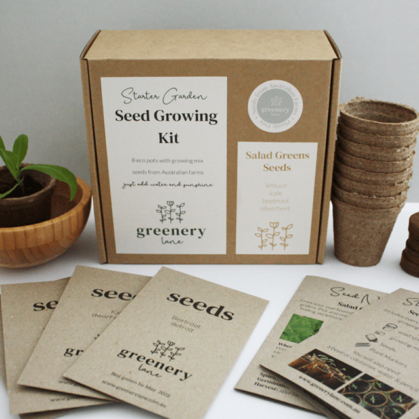 Seed growing kit salad greens